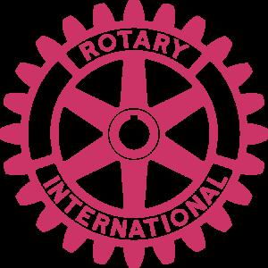 RotaryMoE_Cranberry